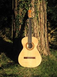 Guitar Dartington 21Jan2014 020