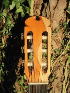 Guitar Dartington 21Jan2014 022