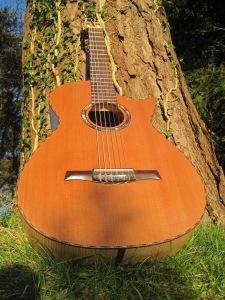 Guitar Dartington 21Jan2014 038