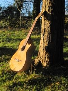 Guitar Dartington 21Jan2014 052