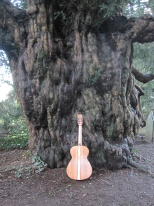 Guitar Dartington 21Jan2014 065