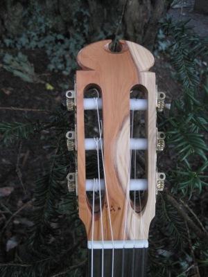 Guitar Dartington 21Jan2014 072
